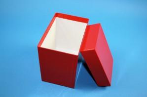 CellBox Maxi lang Kryobox (Karton spezial) ohne Facheinteilung, rot, Höhe 128 mm