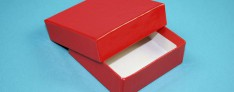 Boîtes de Cryo 133x133x25 mm h.