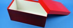 Bravo carton boîtes de Cryo 133x257x130 mm h.
