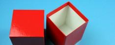 Boîtes de Cryo 142x142x100 mm h.