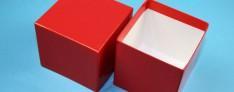Boîtes de Cryo 142x142x75 mm h.